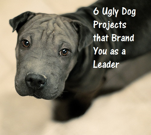 3837348260_67f76b0032_ugly_dogs-blog